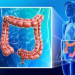 Рис. 2. Существует несколько видов методов исследования толстой кишки, каждый из которых направлен на изучение конкретной зоны.